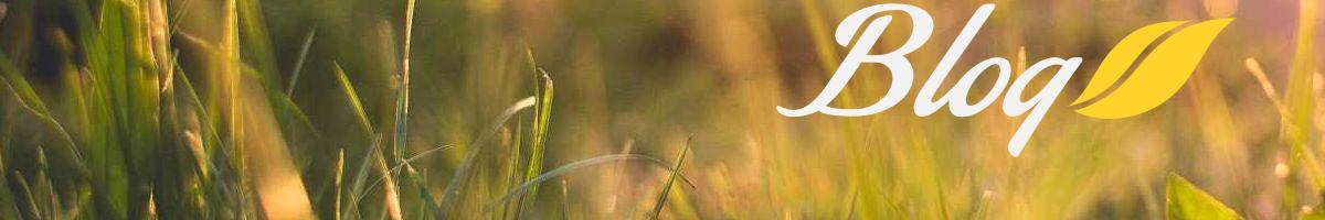 Natur-Blog